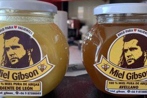 Vendedora faz apelo para Mel Gibson permitir uso da imagem em mel